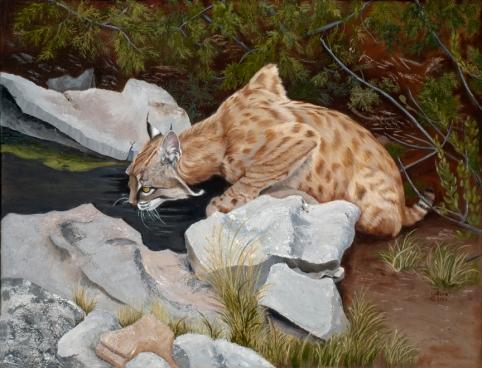 Thirsty Cat